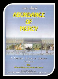 Abbandance of mercy1